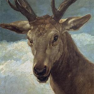 ראש של צבי - אברהם פסו